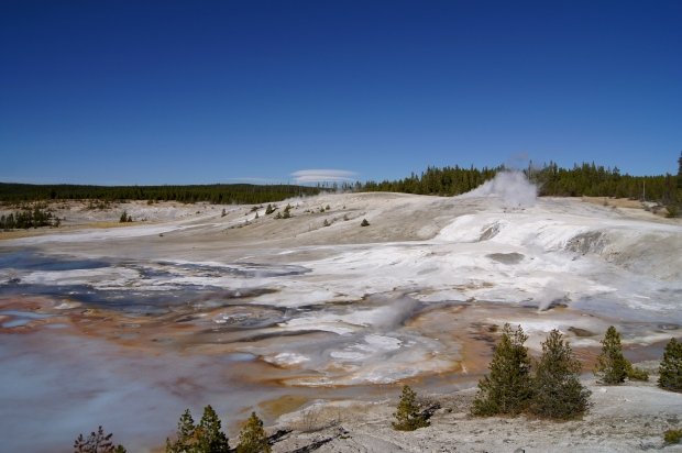The Norris Geyser Basin, about 5 minutes from our camp, and when the wind blew just right it smelt even closer.